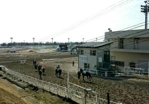 Image_19